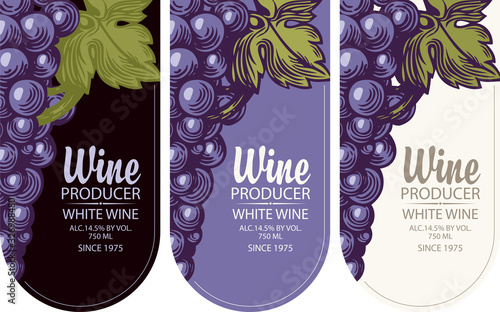 Set of vertical wine labels or banners with grapes and inscriptions in a figured frame. Wine collection premium quality, flat vector illustration