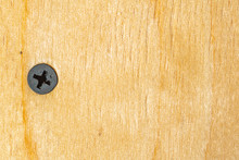 Black Screw Twisted In Plywood, Close-up