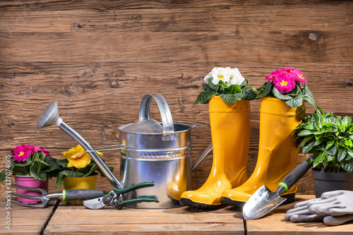 Fototapety, obrazy: Gardening Tools And Flowers