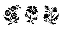Vector Black Silhouettes Of Flowers Isolated On A White Background.