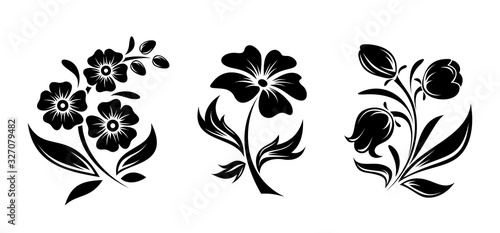 Fotografie, Obraz Vector black silhouettes of flowers isolated on a white background