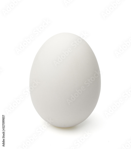 Single white egg isolated on white background. Canvas Print