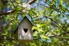 Birdhouse With Heart Shaped Opening  Hanging In An Apple Tree In Spring