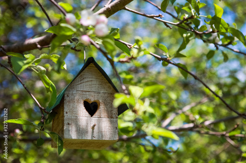 Birdhouse with heart shaped opening  hanging in an apple tree in spring Wallpaper Mural