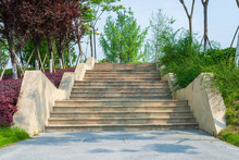 Stone Steps In The Park