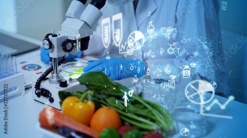 食品と科学 Wallpaper Mural