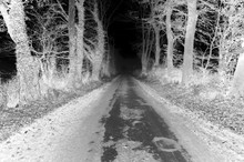 Inverted Negative Black And White Image Of A Rural Country Road Lane With Trees Either Side.  Abstract Image