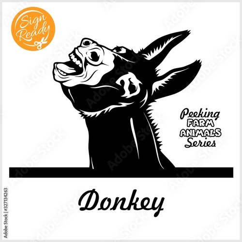 Peeking Donkey - Cheerful neighing Donkey peeking out - face head isolated on wh Wallpaper Mural