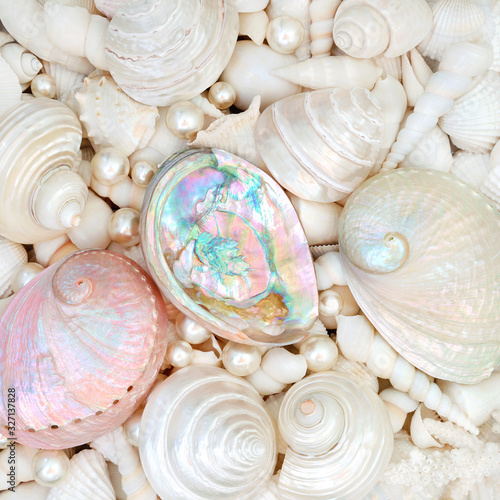 Seashell abstract background with mother of pearl seashells and a variety of smaller white shells Canvas Print