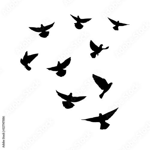 Doves are flying. Silhouette of pigeons that fly on a white background. Vector illustration Wall mural