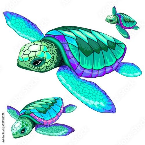 Sea Turtles Dance Oceanlife Vector Illustration #327184271