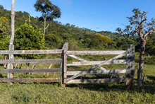 Gate And Fence Made Of Wood, O...