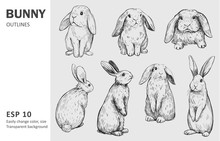 Sketch Of Bunny. Hand Drawn Ou...
