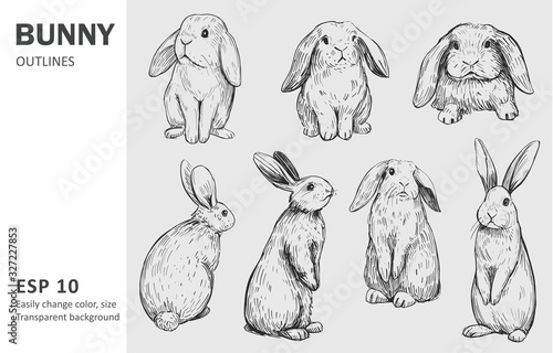 Carta da parati Sketch of bunny. Hand drawn outline converted to vector