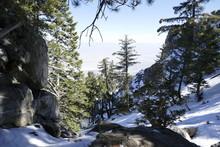 Snow Landscapes In Mount Jacinto National Park
