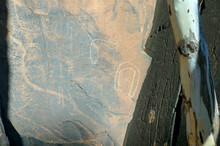 Aboriginal Rock Engravings At Sacred Canyon, Flinders Ranges National Park, South Australia, Australia