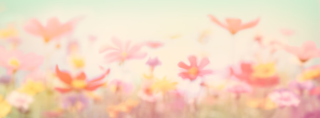 Abstract wild flowers background