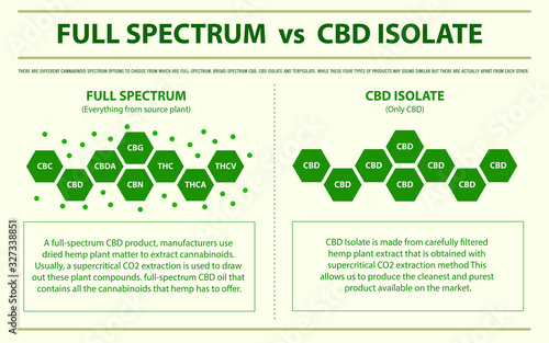 Full Spectrum vs CBD Isolate horizontal infographic illustration about cannabis as herbal alternative medicine and chemical therapy, healthcare and medical science vector Wallpaper Mural