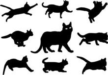 Cats Silhouette, Vector File