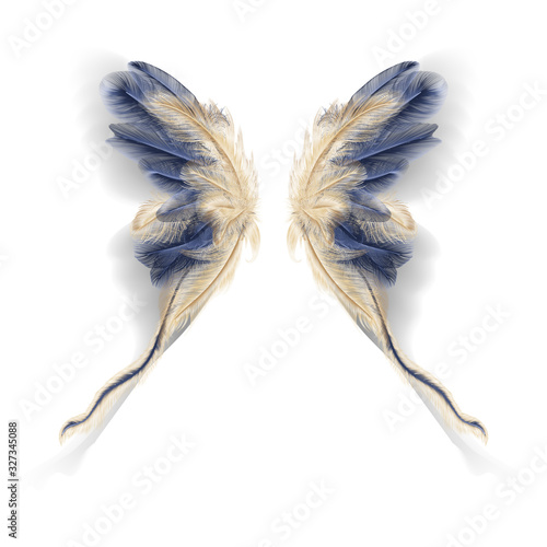 Photo Butterfly wings with feathers