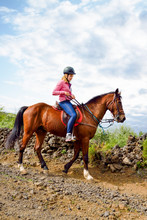 Young Rider On Horseback Ride In Lush Nature