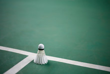Badminton On The Badminton Cou...