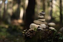 Steinhaufen Im Wald