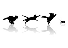 Cats Chasing Mouse, Vector File