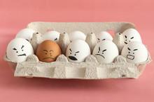 Group Of White Organic Chicken...