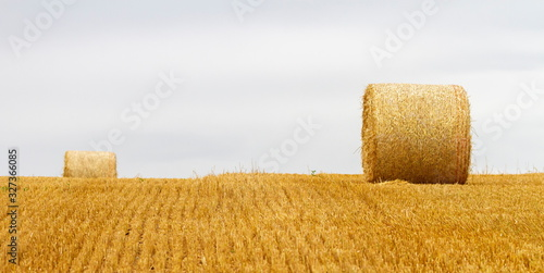 Photo Big round bales of straw in a field after harvest by cloudy day