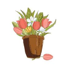 Cartoon Basket With Tulips Iso...