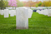 White Tombstone On The Lawn Of...