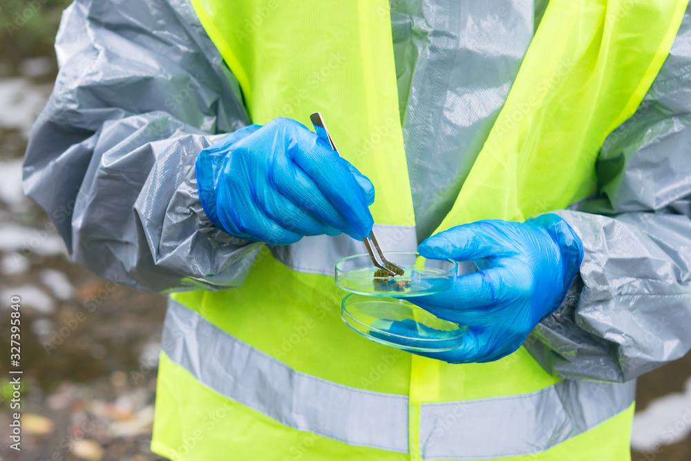 Fototapeta environmental laboratory specialist in protective suit took a soil sample with tweezers and put a piece in a glass container, close-up