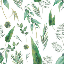 Flora Wallpaper Design. Hand D...