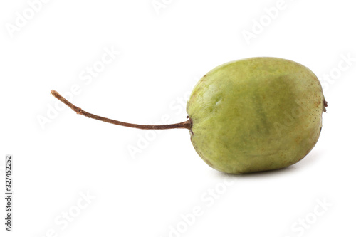 Photo Little kiwi isolated on white. Actinidia kolomikta
