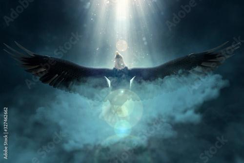 Bald eagle flying over the clouds 3d illustration Wallpaper Mural