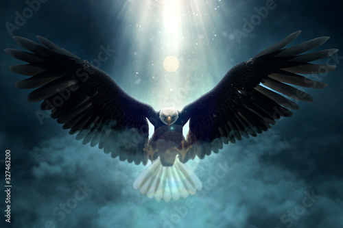 Fotografie, Tablou Bald eagle flying over the clouds 3d illustration