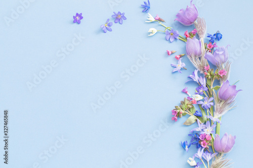 spring flowers on blue background Wallpaper Mural