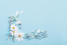 White Flowers On Paper Backgro...