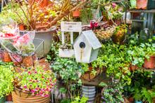 Birdhouse Nestles Among Spring...