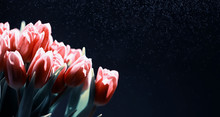 Bouquet Of Fresh Flowers. Holi...
