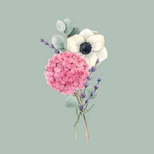 Beautiful Vector Gentle Bouquet With Watercolor Pink Hydrangea Flowers And White Anemones With Lavander. Stock Illustration. Floral Background.