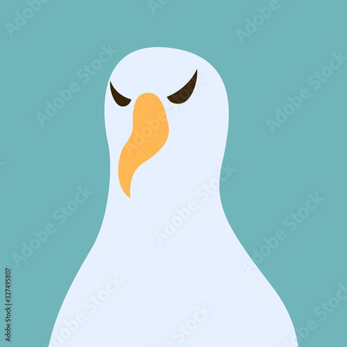 Fotografía albatros bird head,vector illustration, flat style