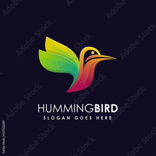 Modern colorful humming bird logo icon Canvas Print