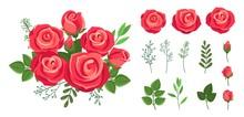 Red Roses Bouquet. Wedding Flowers Decoration. Vintage Isolated Floristic Botanical Elements. Vector Floral Collection Bouquet Flower, Floral Rose Bloom For Decoration Illustration