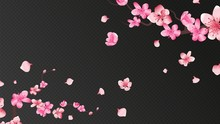 Sakura Blossom. Falling Petals, Isolated Flower Elements. Flying Realistic Japanese Apricot Or Pink Cherry Fall Down Vector Romantic Background. Branch Blossom Sakura, Flying Petals Illustration