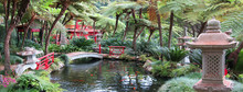 Japanese Stone Lanterns And Fi...