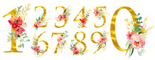 Elegant Summer Decorated Floral Numbers. Golden Digits 1,2, 3, 4, 5, 6, 7, 8, 9, 0 With A Watercolor Bouquet. Element For Design