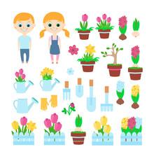 Seth Spring And Gardening: Chi...
