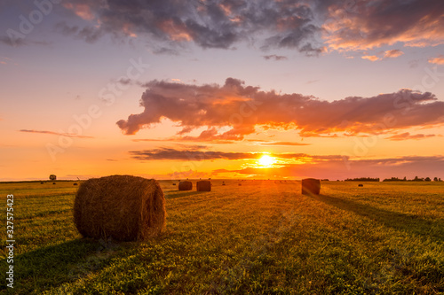 Obraz A field with haystacks on a summer or early autumn evening with a cloudy sky in the background. Procurement of animal feed in agriculture. Landscape. Sunset. - fototapety do salonu